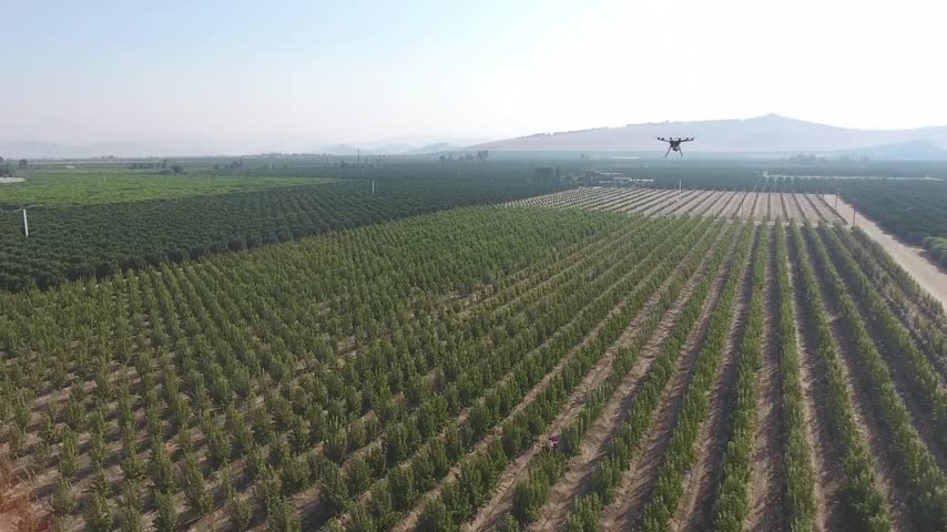 Eye On Ag- Drone And Farming_34237850-159532