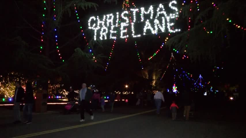 Fresno Christmas Tree Lane 2020 Fresno's Christmas Tree Lane will still light up 2020, but without