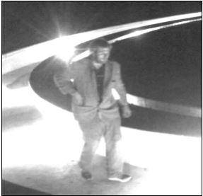 Fountain Theft Suspect_1517473591982.JPG.jpg