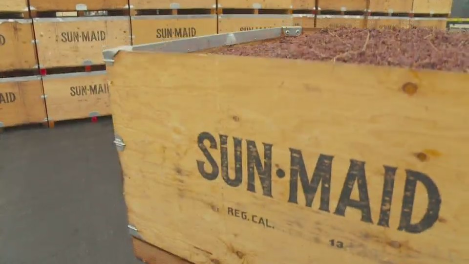 Sun-Maid continues to expand
