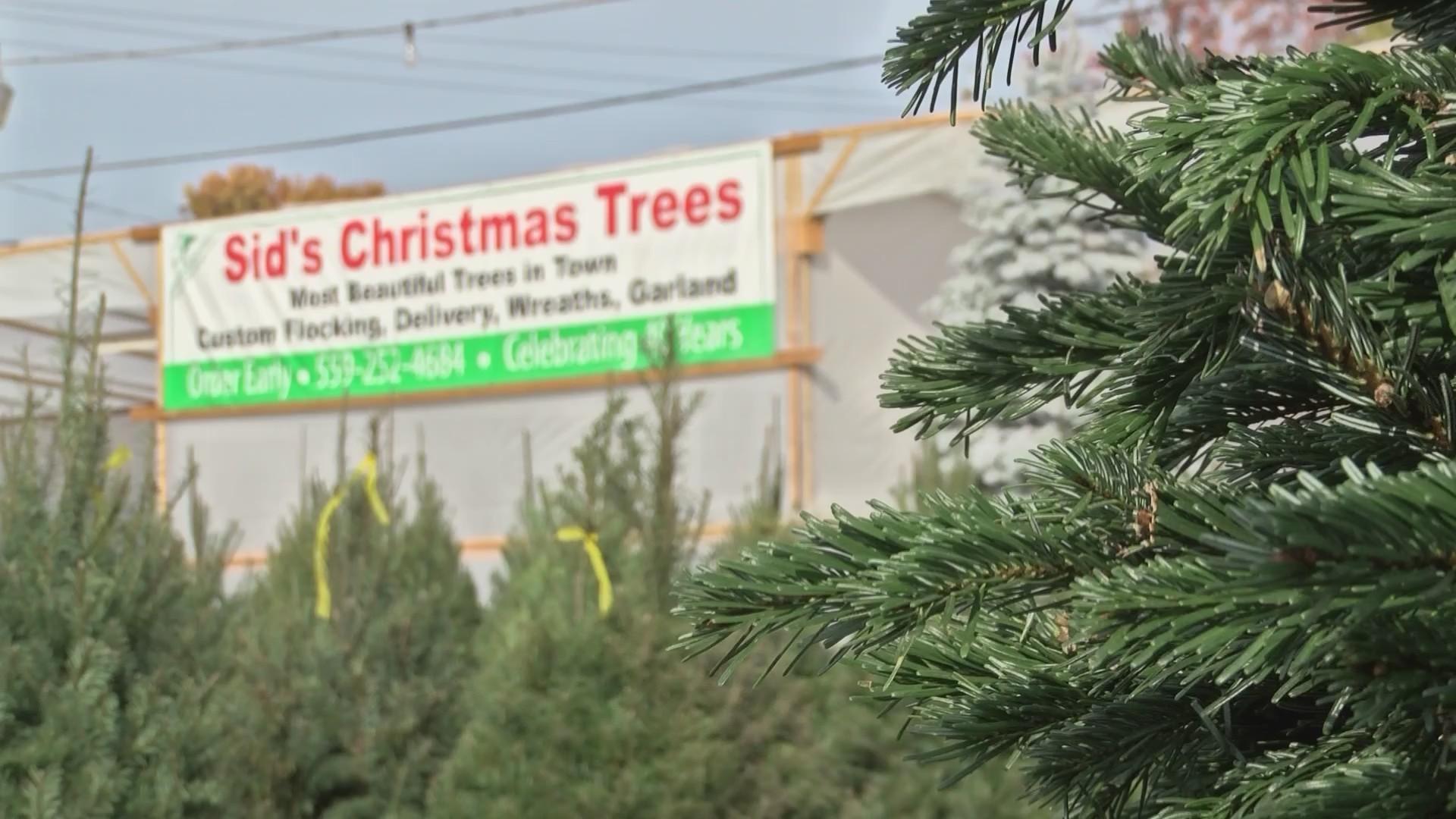 Christmas Tree Shortage.Christmas Tree Shortage