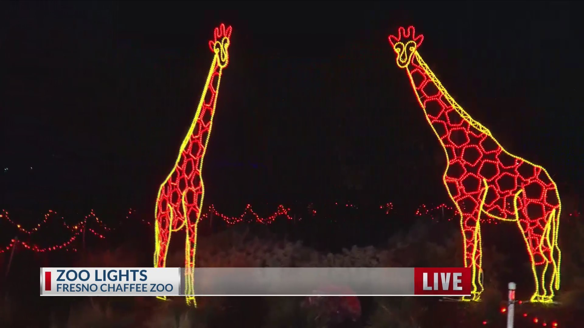 ZooLights_now_open_weeknights_through_Ch_0_20181217172429