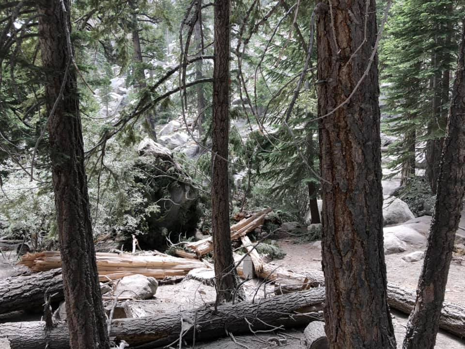 Earthquake causes rockslide in Inyo National Forest ...