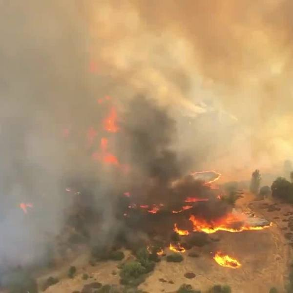 CAL FIRE: Evacuations in progress as the Mineral Fire burns west of Coalinga