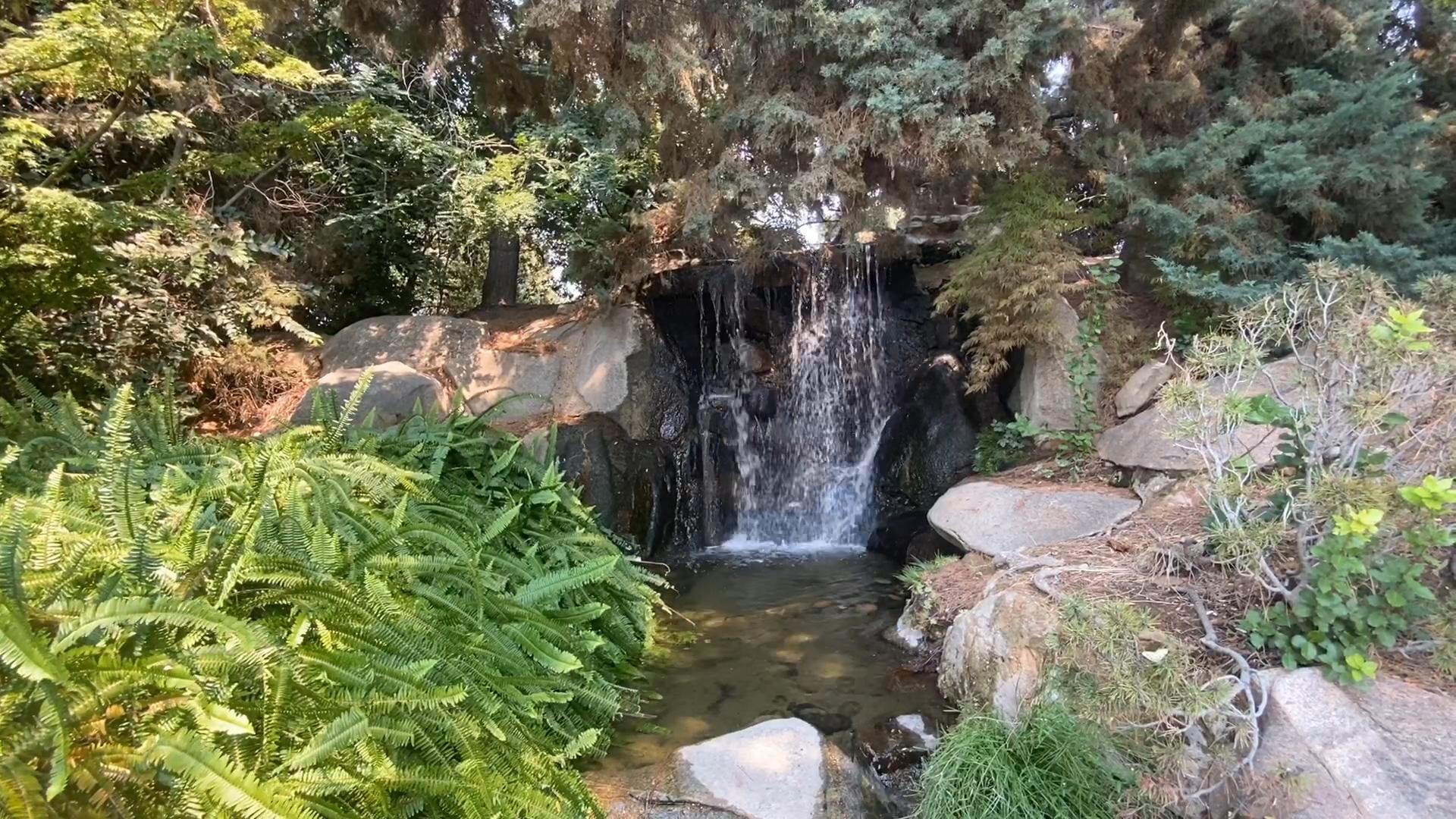 Shinzen Japanese Garden