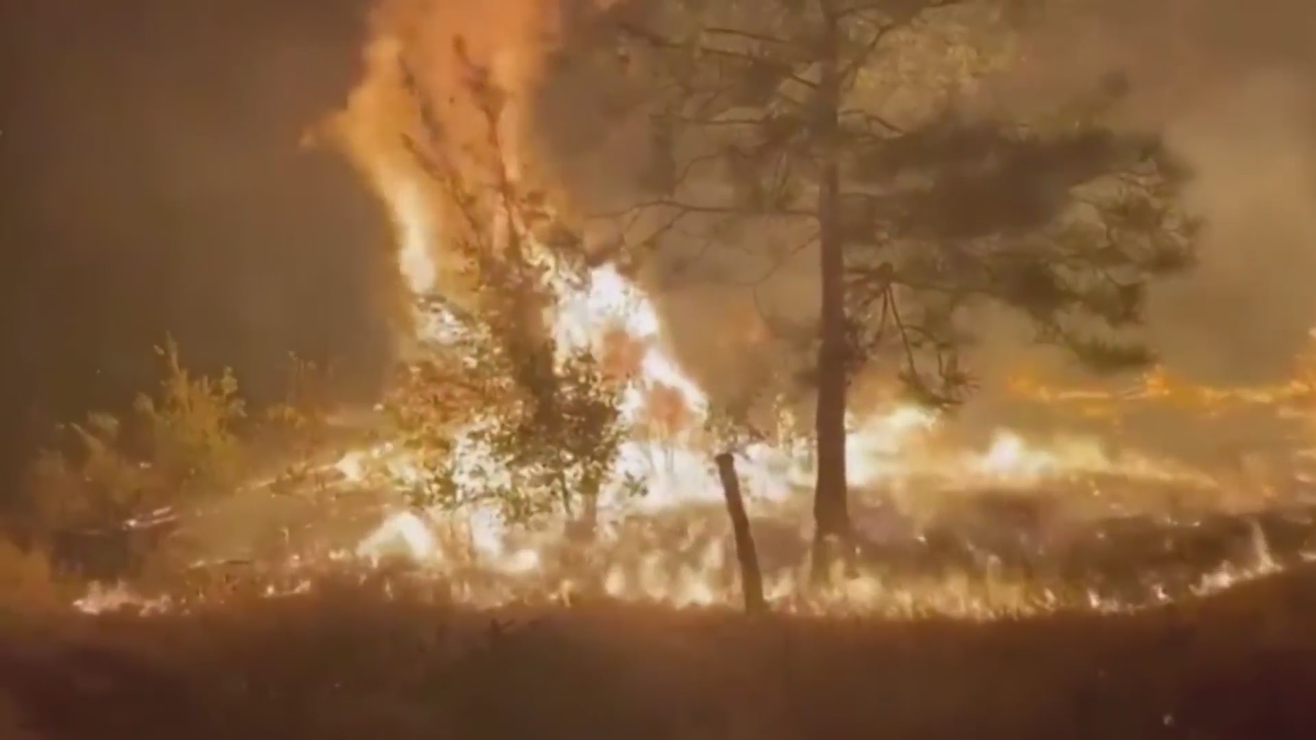 $100M bill to fight the Creek Fire, says Cal Fire