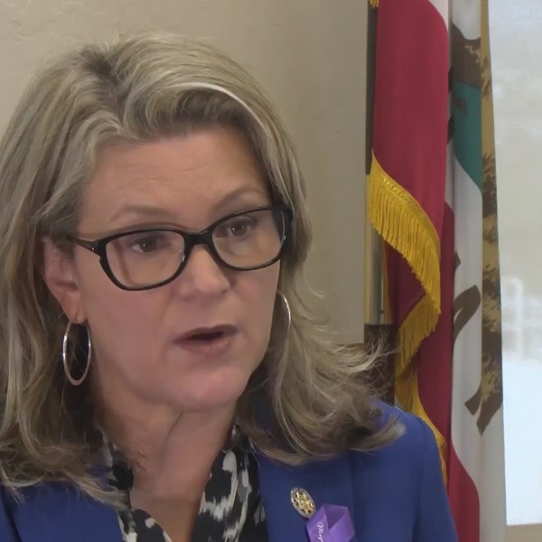 DA, Sheriff address hundreds of Fresno County inmates released during $0 bail, COVID-19 pandemic