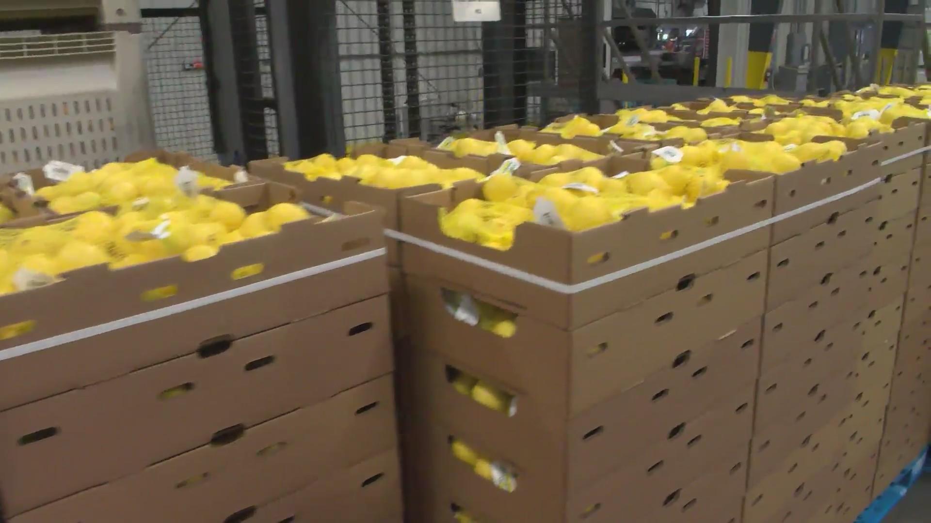 Citrus season is underway in Central California
