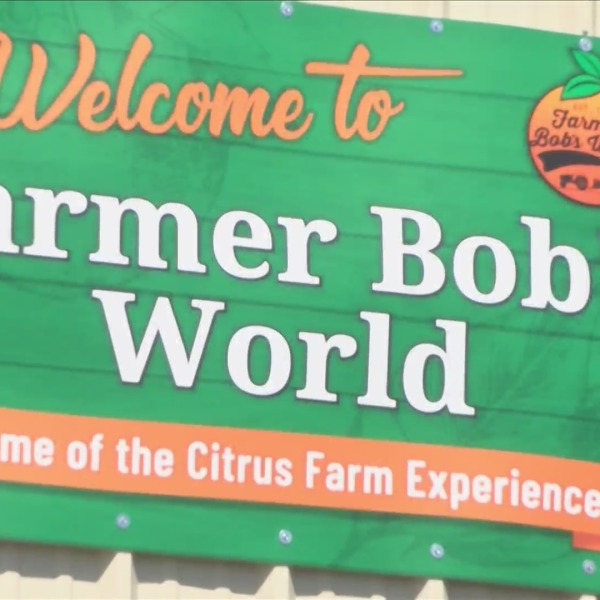 Ag turns tourist attraction as Farmer Bob's World opens in Ivanhoe